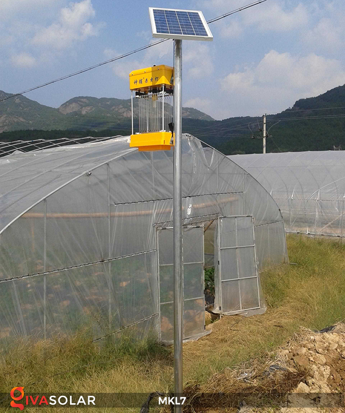 Đèn bắt côn trùng chạy năng lượng mặt trời MKL7 4