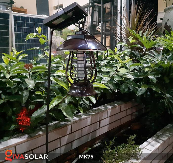 den diet con trung solar mk75 10