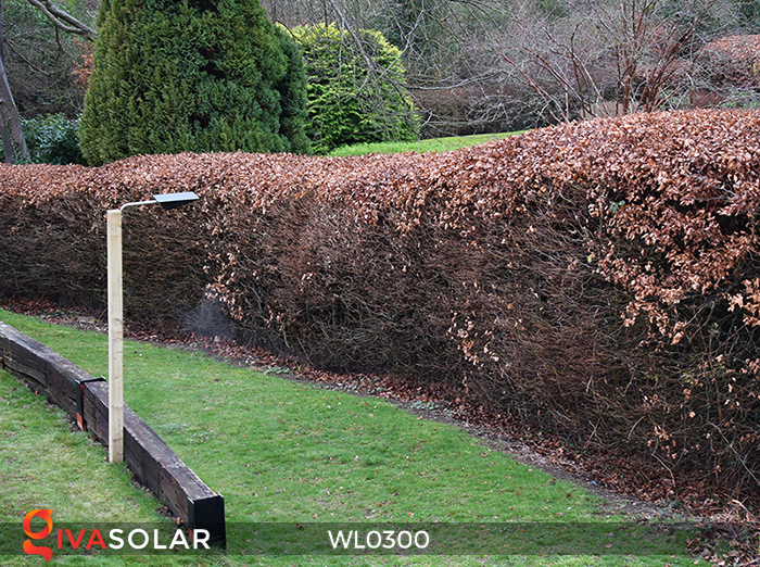 Đèn tường chạy năng lượng mặt trời WL0300 13
