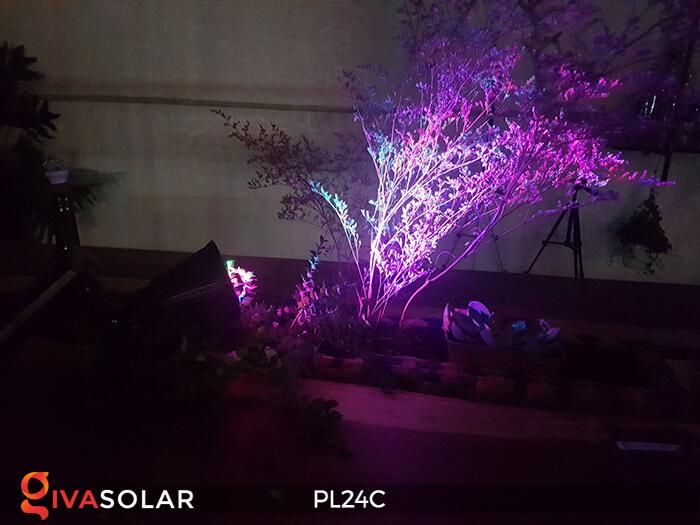 Đèn chiếu tiểu cảnh năng lượng mặt trời PL24C đổi màu 14