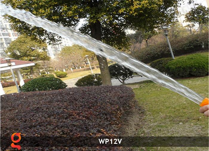 Máy bơm nước chạy năng lượng mặt trời WP12V 15