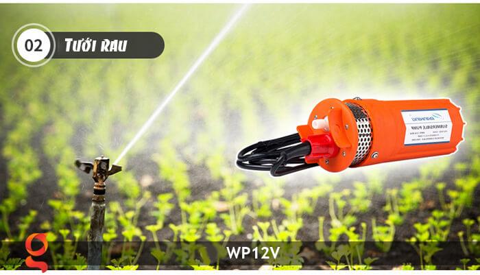 Máy bơm nước chạy năng lượng mặt trời WP12V 17