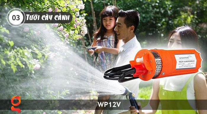 Máy bơm nước chạy năng lượng mặt trời WP12V 18