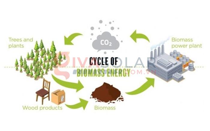 Năng lượng tái tạo là gì? Tồn tại ở những dạng nào? 4