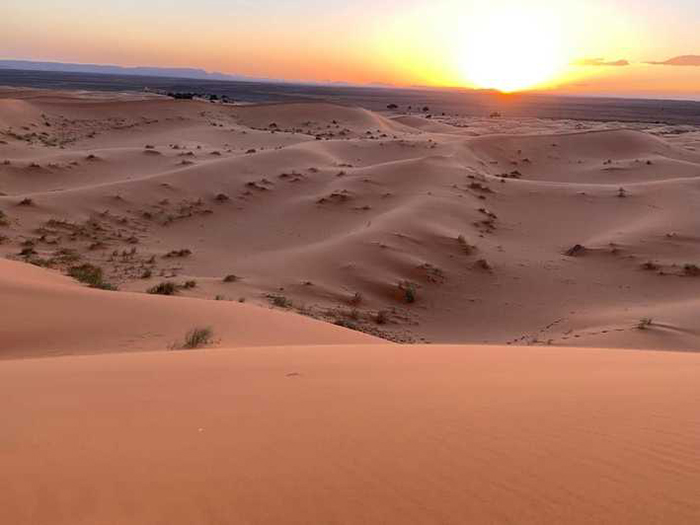Điện mặt trời trên Sahara: kế hoạch đầy tham vọng này liệu có thành công? 1