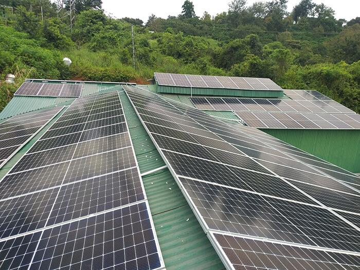 Hoàn thành lắp đặt điện năng lượng mặt trời 60kWp tại Đắk Nông 10